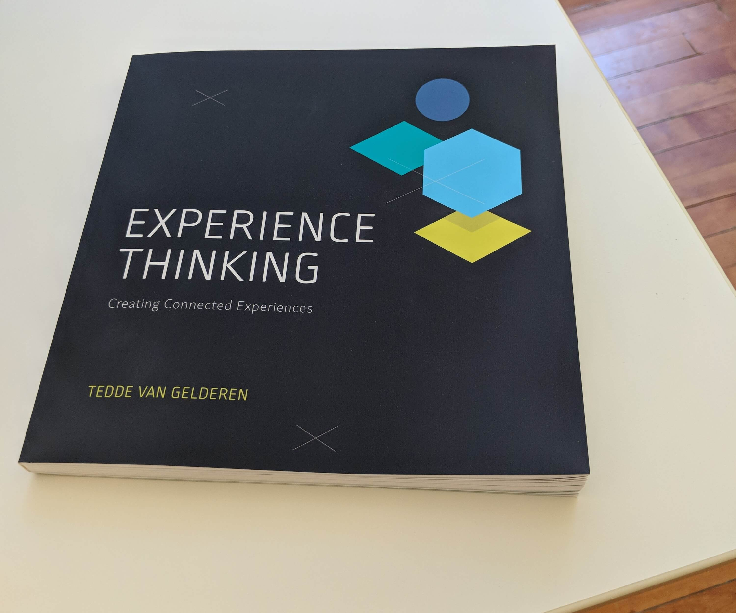 Experience Thinking book by Tedde van Gelderen